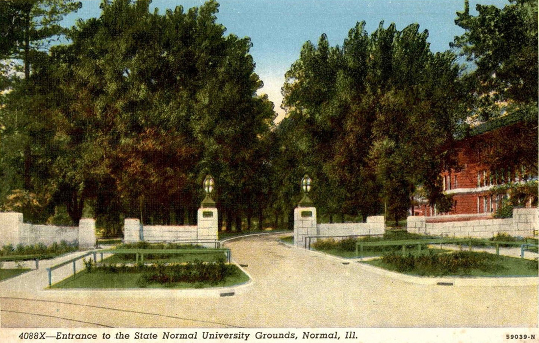 the five lincoln memorial trees of bloomington normal il and